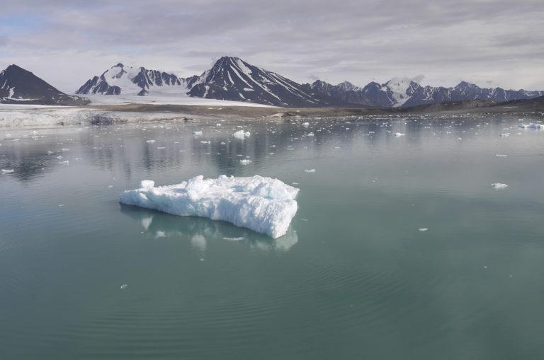 Brita Kreutzfeldt · Kreuzfahrt · Arktis · 2011 · Allein auf weiter Flur