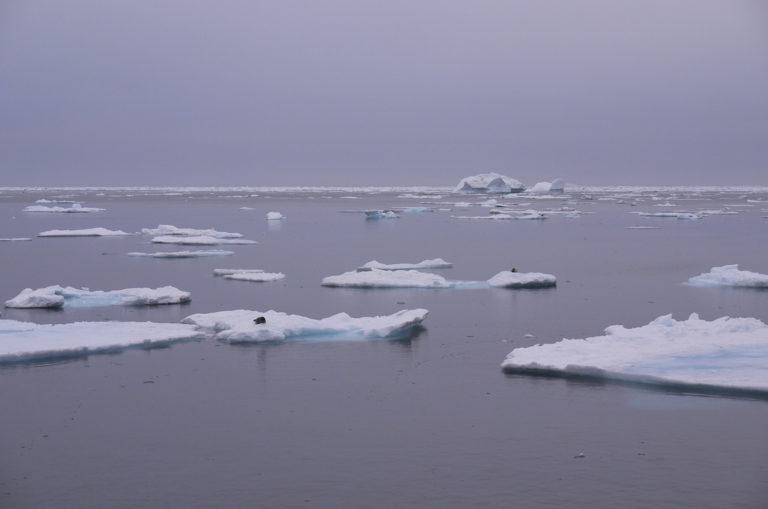 Brita Kreutzfeldt · Kreuzfahrt · Arktis · 2011 · Eisschollen